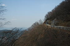 blog_pic2267.JPG