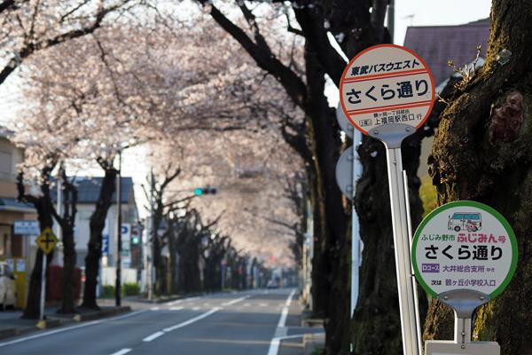 blog_pic00431.jpg