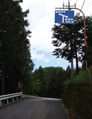 blog_pic1381.jpg