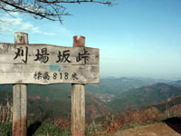 blog_pic1910.JPG