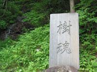 blog_pic2034.JPG