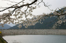 blog_pic2363.JPG