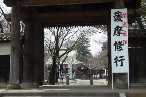 blog_pic7096.jpg